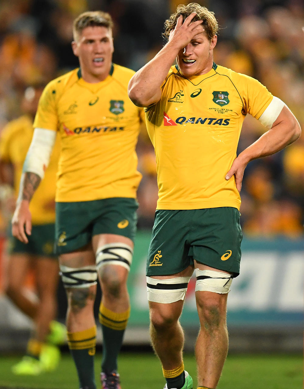 Michael Hooper Australia Rugby Union Championship Bledisloe Cup Wallabies 2017 tall