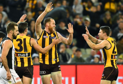Roughead stands down as Hawthorn skipper