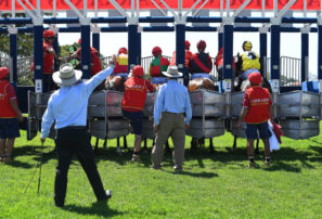 Behind the barriers: Five bets for Wednesday