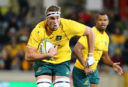 Wallaby Izack Rodda ruled out for year