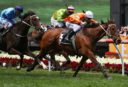 Moonee Valley quaddie preview for March 16th