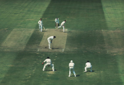 1980 to now: Remembering some of Australia's best home Test performances