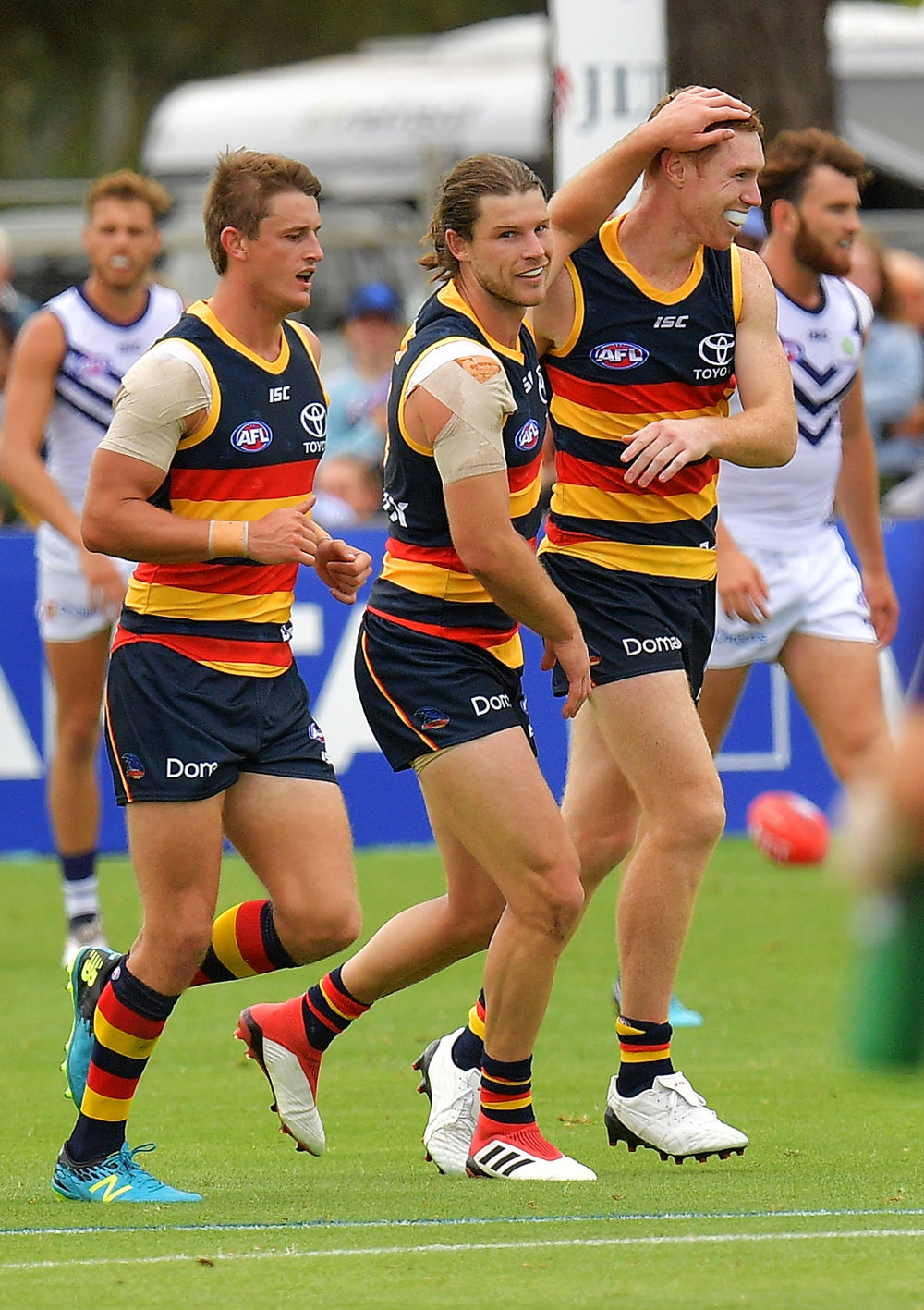 Bryce Gibbs Adelaide Crows tall