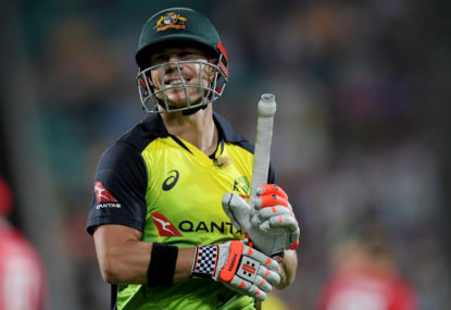 Warner, Smith lead Aussie T20 Cup charge