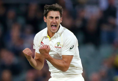 Analysing Australia's Test cricket winners: The modern pace bowling masters