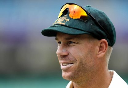 Warner can flourish in middle order at World Cup