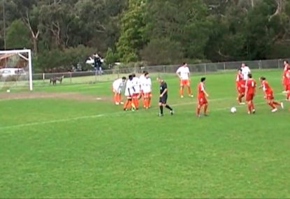 Controversial free kick goal divides football fans