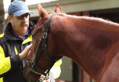 How to train the perfect racehorse