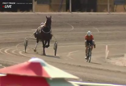 Former Tour de France cyclist races a horse, because of course