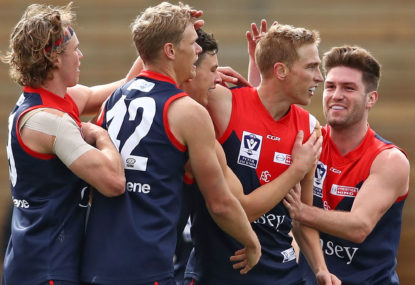 The comprehensive end-of-year review: Melbourne Demons