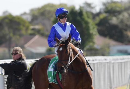 Melbourne Cup 2019: Who came fourth?