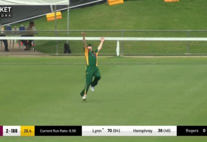 Young paceman makes an absolute meal out of a Chris Lynn catching opportunity