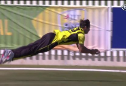 Hilton Cartwright hilariously admits to exaggerating his diving catch