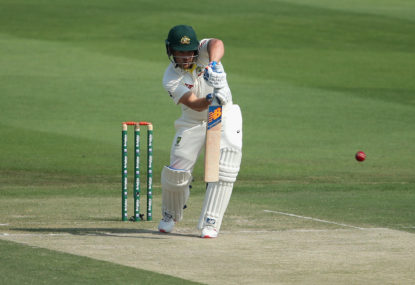 Finch defies critics with grinding innings