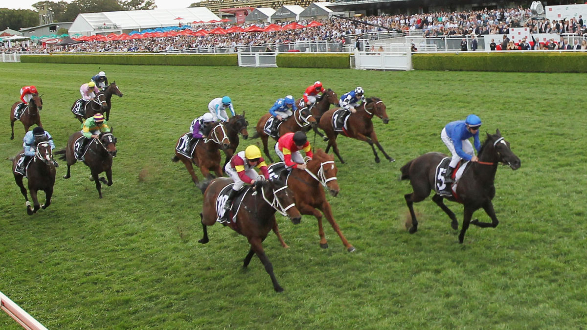 Championships Day 1: Group 1 tips and previews