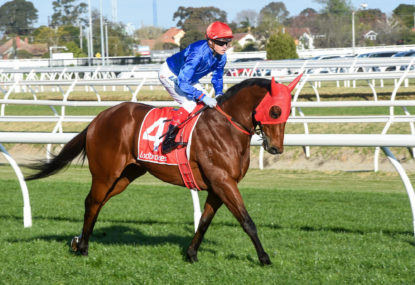 The Mounting Yard: Feehan Stakes Day preview
