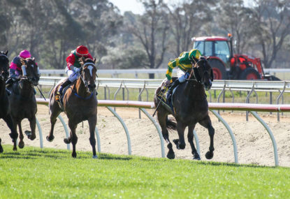 The Mounting Yard: Ballarat Cup Day preview