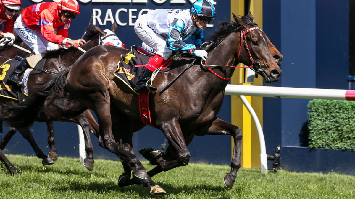 Thousand Guineas: Group 1 tips and preview
