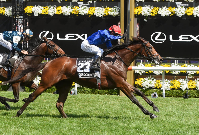 Cross Counter (GB) ridden by Kerrin McEvoy wins the Lexus Melbourne Cup at Flemington Racecourse on November 06, 2018 in Flemington, Australia.