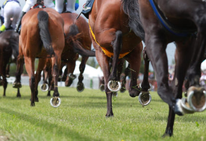 Five horses to back in Melbourne and Sydney this Saturday