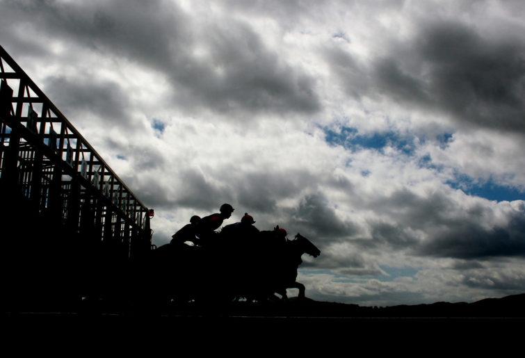 Horse racing generic 3 -