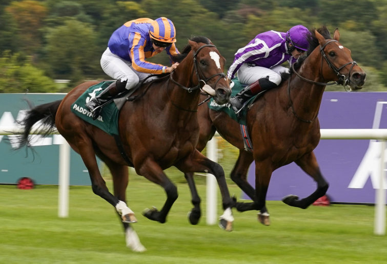 Donnacha O'Brien riding Rostropovich