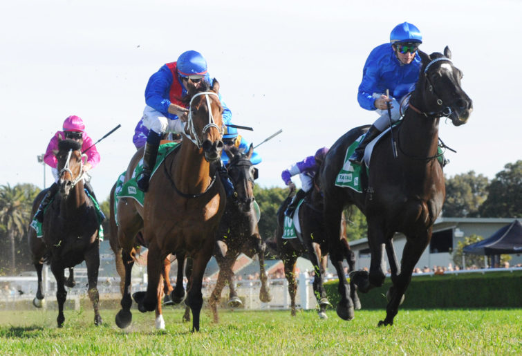 Jockey Glyn Schofield rides Avilius