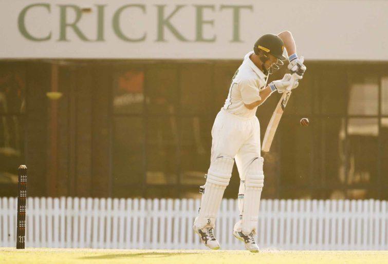Generic batting shot cricket