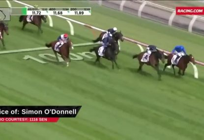 Simon O'Donnell's tips for the Melbourne Cup