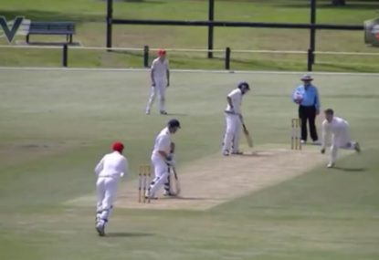 Reflex caught and bowled would do Nathan Lyon proud