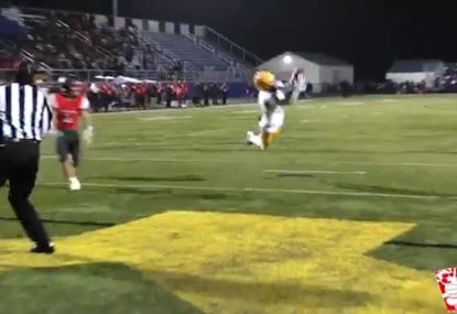 Player launches into end zone and plucks football from the sky to score TD