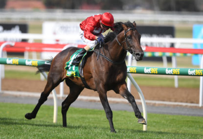 Geelong Cup preview: Every runner analysed