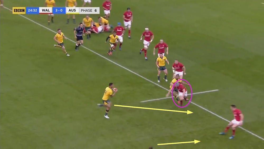 wallabies offensive analysis