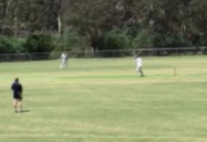 Park cricketer goes for the slog on 96... does not end well