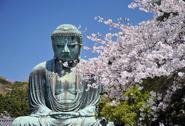 A buddha statue in Kamakura, Japan