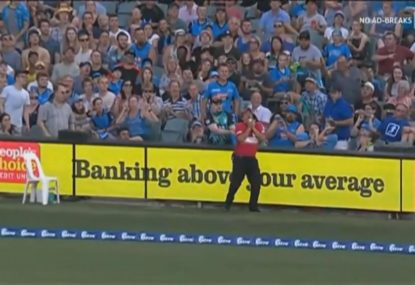 Security guard becomes hit with the commentators after catching a six