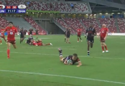 Sunwolves licking their wounds after Sharks feeding frenzy