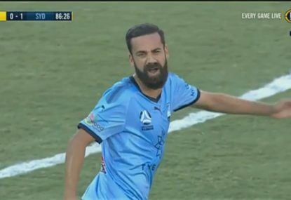 Alex Brosque has no shortage of words for the referee after picking up a  card