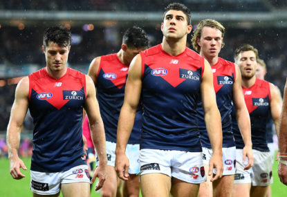 AFL 2019 top 100: Melbourne Demons
