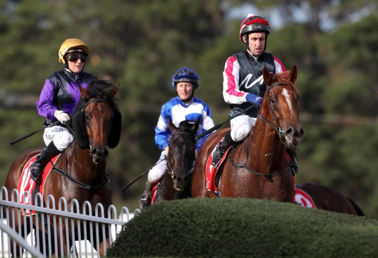 Mornington Cup racing
