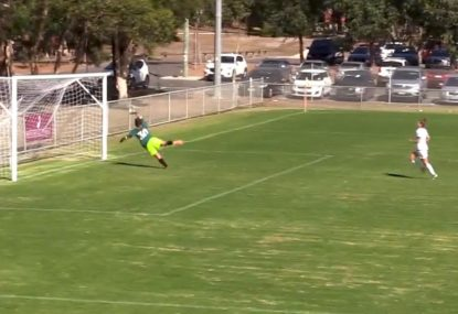 Unexpected pearler from outside the box catches keeper off guard