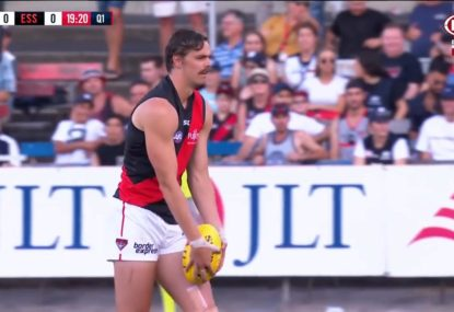 'It just doesn't sound right': Nick Riewoldt questions Joe Daniher's calf injury