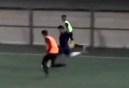 Unstoppable long-range strike expertly fired from the sideline
