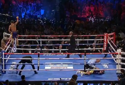 Lomachenko's brutal KO sends opponent face first into the canvas