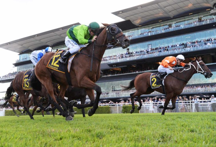 Sydney Cup racing is great racing generic racing horses