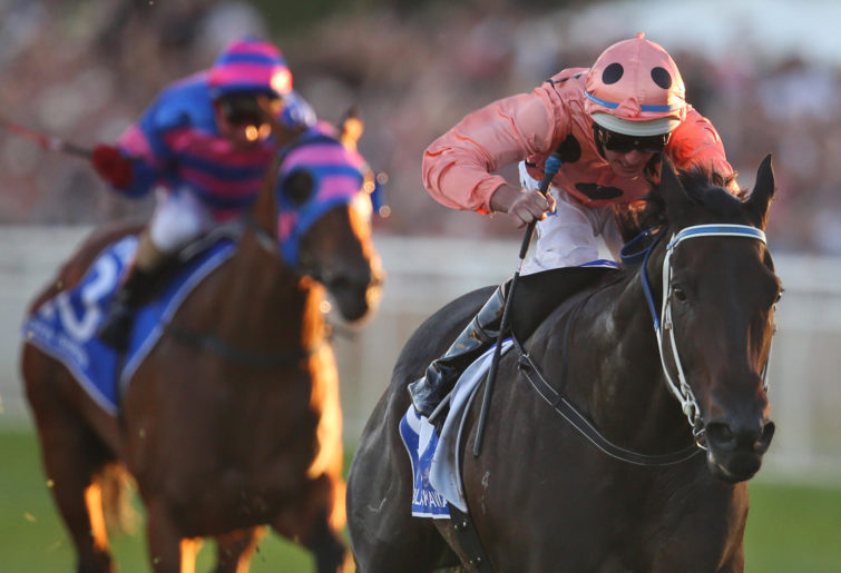 Black Caviar wins her final TJ Smith Stakes