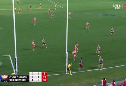 Did an inattentive boundary umpire cost the Swans a goal?