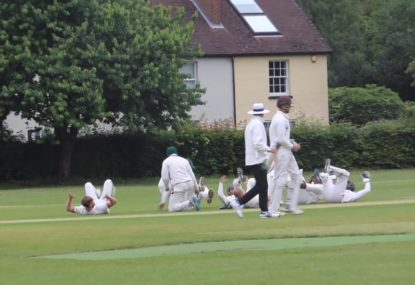 Cheeky village cricket fielders celebrate wicket like upended turtles