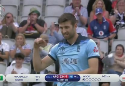 Ruthless England thrash Afghanistan for their biggest ever World Cup victory
