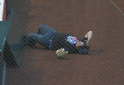 Baseball fan pays the price for a costly tumble onto the field